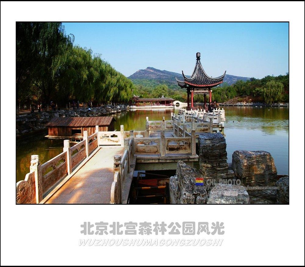 北京北宫森林公园风光 数码影像 - 辛集社区 - 辛集室