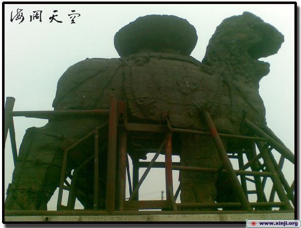 沧州铁狮子印象 手机拍